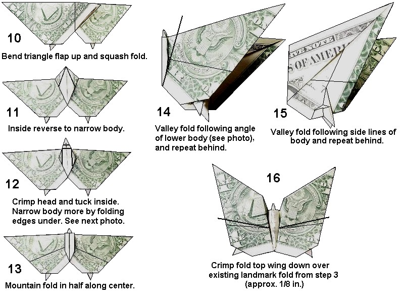 Origami Money Koi Instructions