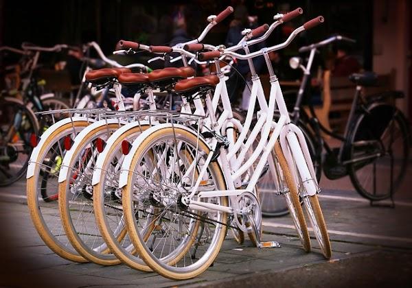 Rincian Modal Perjuangan Rental Sepeda Dan Laba Bisnisnya