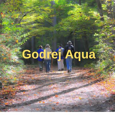 Godrej Aqua, https://godrejaquahosahalli.grihhpravesh.com/