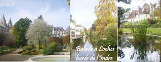 visite touraine loches tours amboise chateau loire blois chaumont chedigny azay beauval