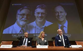 2019 Nobel Prize in Medicine