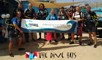 Join in a dive site clean up!