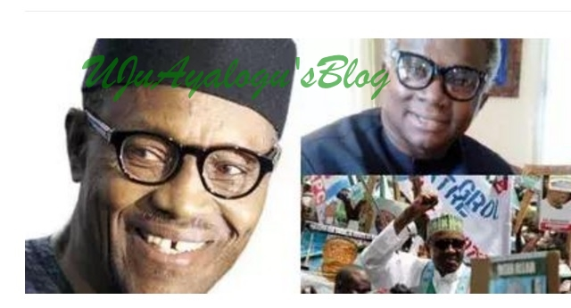What Okorocha did to Buhari, Tinubu that caused Igbo trouble – APC chieftain, Osita Okechukwu