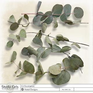 http://shop.scrapbookgraphics.com/2017-cu-eucalyptus.html
