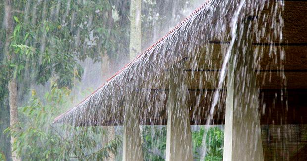 Musim Hujan? Begini Cara Melindungi Dinding Rumah yang Tepat