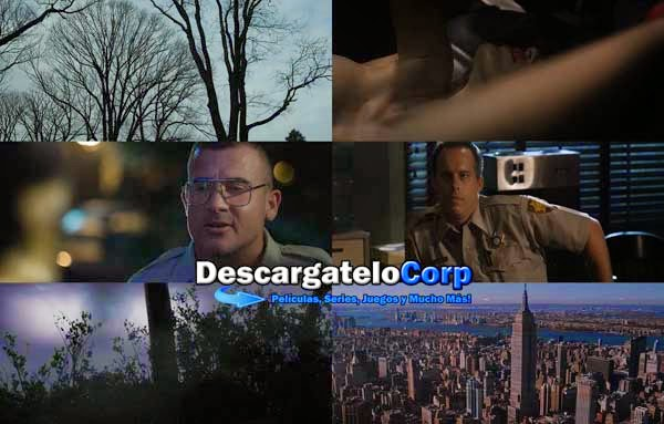Descargar The Bag Man DVDrip Latino