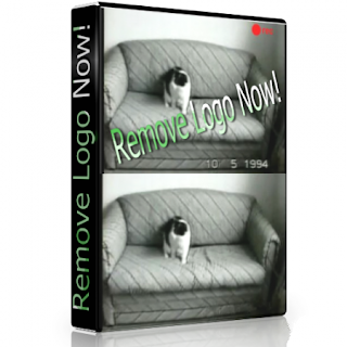 Easy Video Logo Remover Full Crack