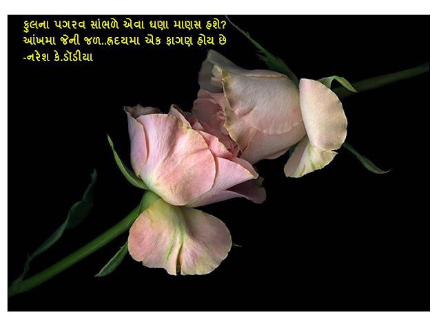 Phool Na Pagrav Sambhde Eva Ghana Manas Hase Sher By Naresh K. Dodia