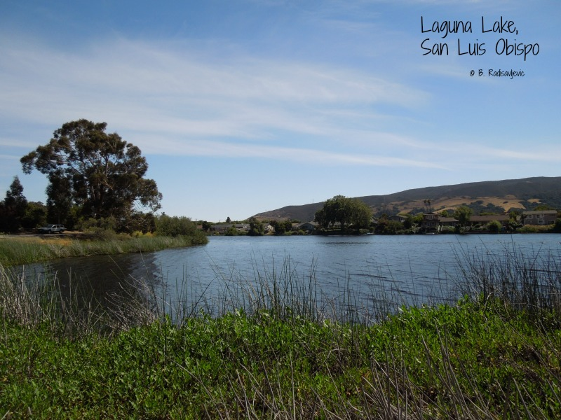 Staying Cool at Laguna Lake in San Luis Obispo