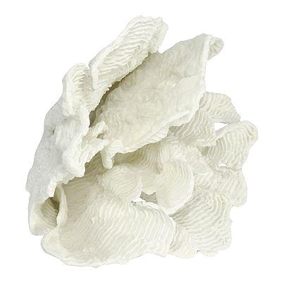 white coral for decor