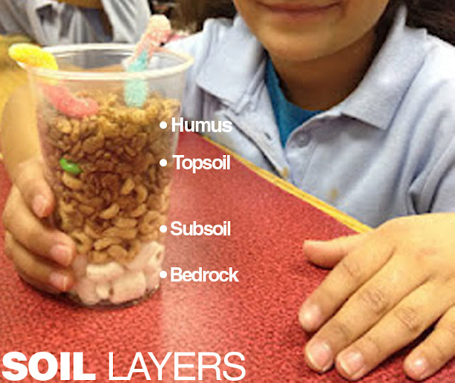 E is for Explore!: Soil Layers in a Cup
