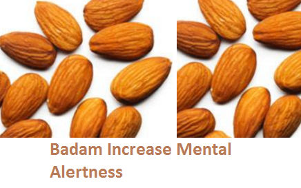 Health Benefits of Almond or Badam Increase Mental Alertness