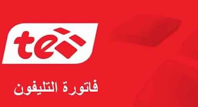 استعلم عن فاتورة التليفون الأرضي لشهر يناير 2018 على موقع المصرية للأتصالات billing.te.eg