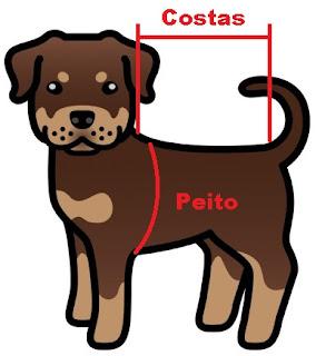 colete ortopédico para cães