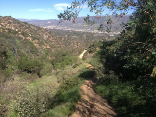 View north from the use trail connecting Vista Del Valle Drive and Fern Canyon Trail, Griffith Park, Los Angeles, February 15, 2016