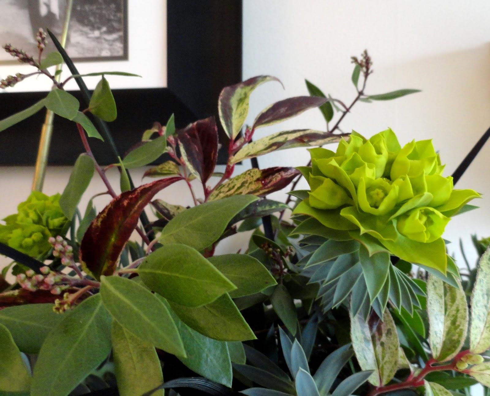 Danger Garden In A Vase On Monday A Mash Up Of Multiples