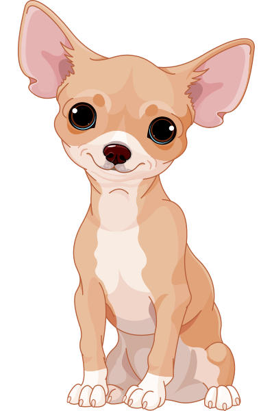 Sweet Chihuahua Icon