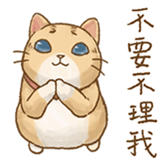 Cat's Lifestyle (Drama Queen Ver.)