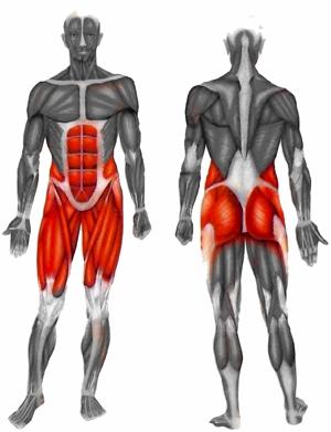 Butt Muscle Strain 47