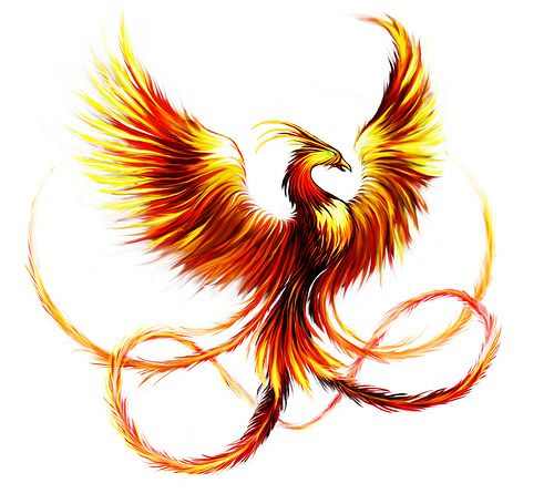 Best Phoenix Tattoo Designs and Meanings