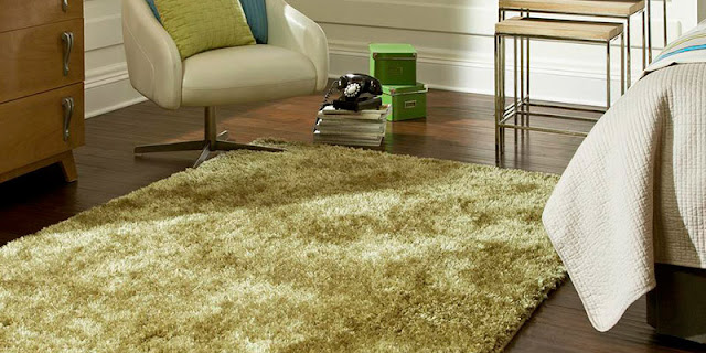 Light green area rug adds softness and color to this room