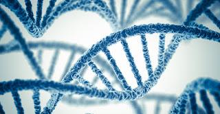 ماهي الجينات