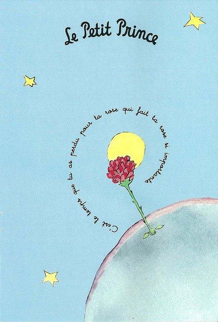 Le Petit Prince - cytat 6 - Francuski przy kawie