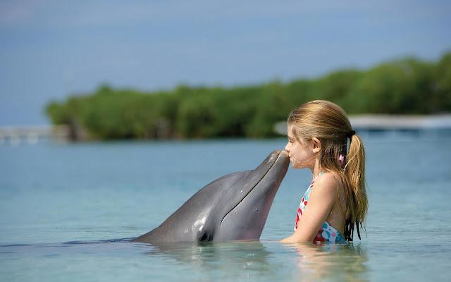 Achtergrond meisje in water met dolfijn
