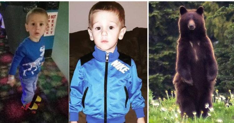 Παιδί βρέθηκε δύο ημέρες μετά την εξαφάνισή του – Μια αρκούδα Το πρόσεχε μέχρι να το βρουν οι άνθρωποι