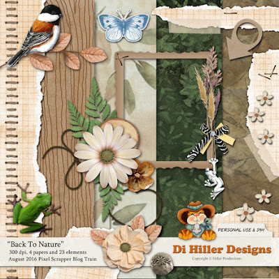 http://www.hillerproductions.com/Downloads/PSAug2016_DiHillerDesigns.zip