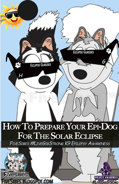 Preparing Your Epi-Dog For The Solar Eclipse
