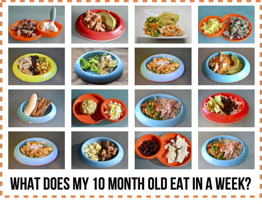 How Much Food Should  Month Old Eat