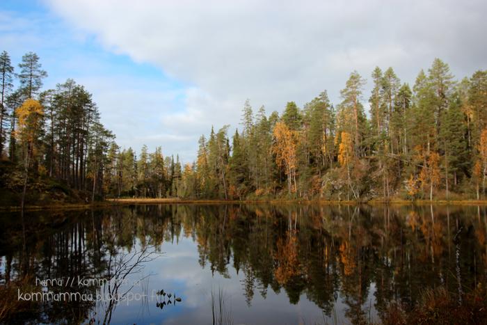 pieni karhunkierros oulanka oulangan kansallispuisto ruska
