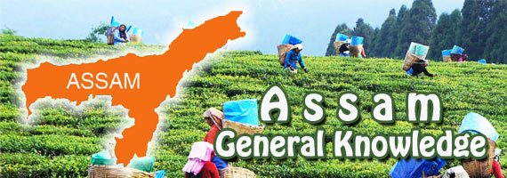 Assam General Knowledge (GK) Questions and Answers 2019