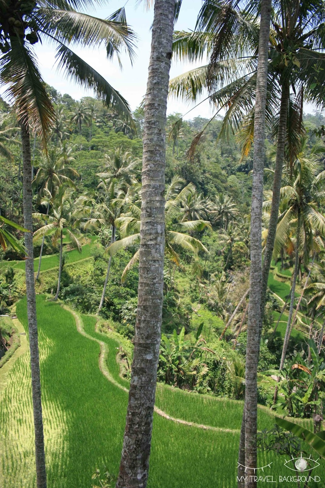 My Travel Background : le temple Gunung Kawi à Ubud, Bali, Indonésie