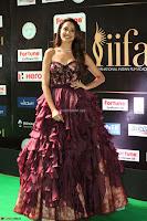 Pragya Jaiswal Sizzles in a Shantanu Nikhil Designed Gown  Exclusive 076.JPG
