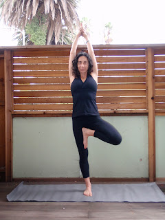 mandy ingber's yogalosophy spice up your yoga variations