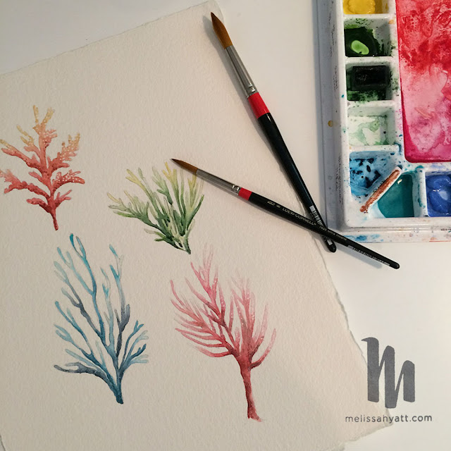 watercolor, coral, sea life, Melissa Hyatt, Sketchbook Conversations