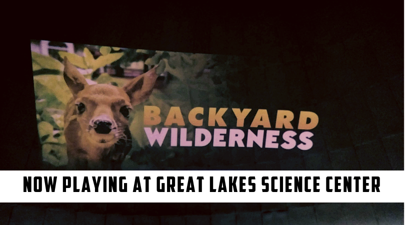 Backyard Wilderness at the Great Lakes Science Center