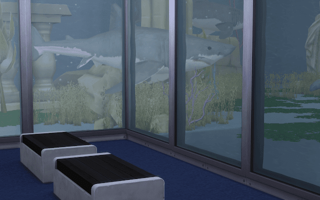 bassin requin sims 4