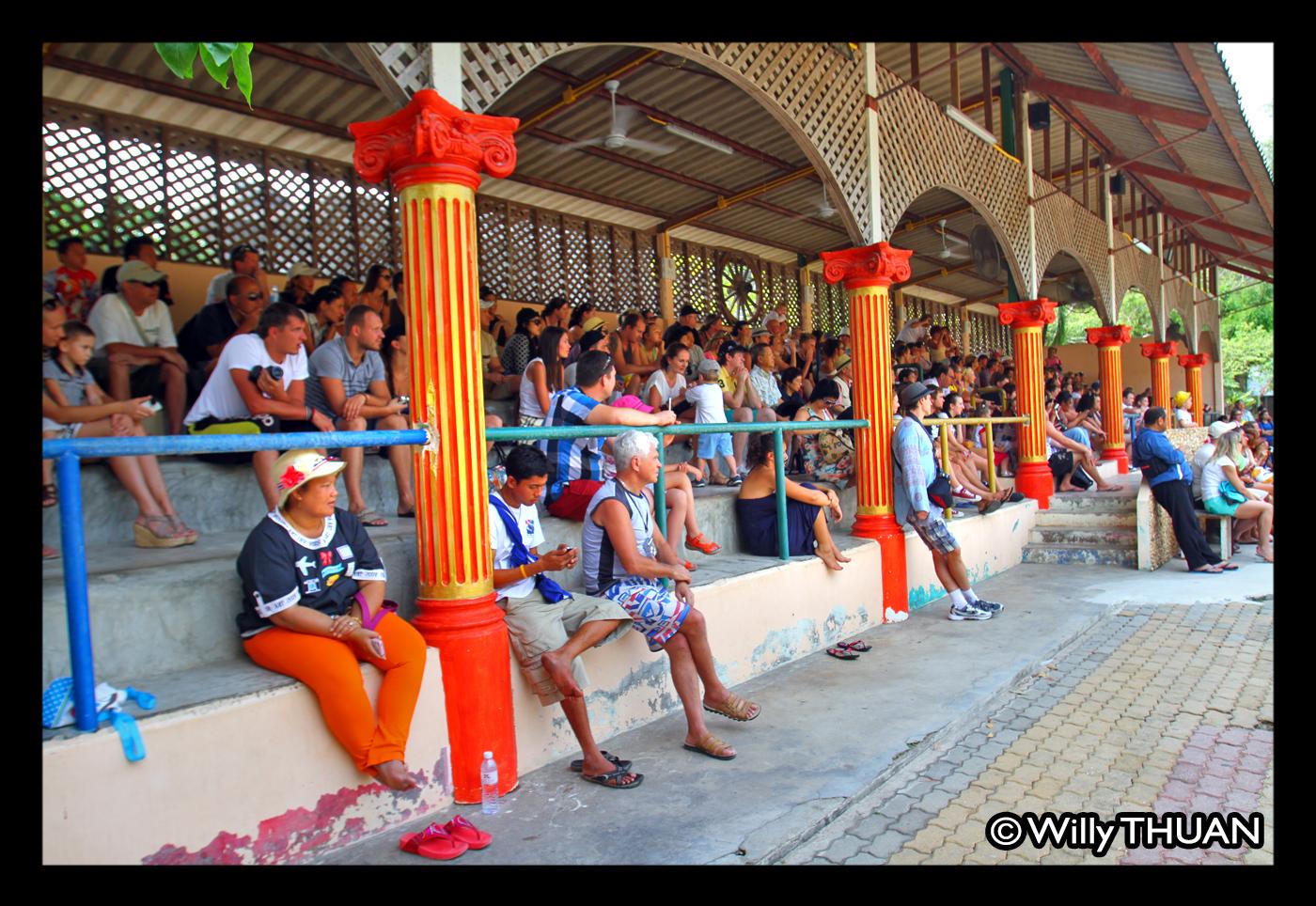 Phuket Zoo - Phuket 101