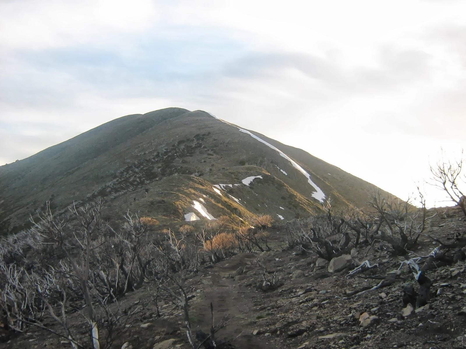 Day Walks: Freycinet