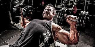 Kreatini, proteini, amino kiseline