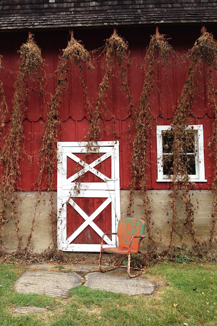 red barn, hops, Seed Savers Exchange Heritage Farm, Anne Butera, My Giant Strawberry
