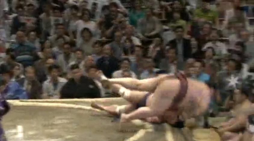 sumo wrestler smackdown