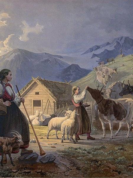 Sejarah Sapi Ternak, sapi timur tengah