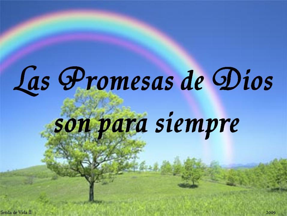 Versiculos Biblicos De Promesas De Dios: Dios Restaura Matrimonios: Promesas De La Biblia