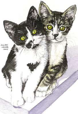 friends 2 kittens up for adoption watercolour painting by artist Jillian Crider