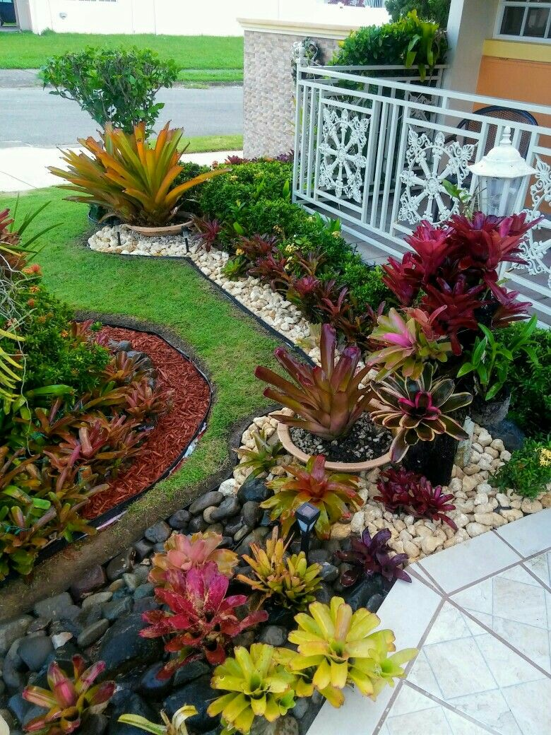 50 Indoor and Outdoor Succulent Plants And Garden Ideas - Bahay OFW