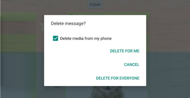 """[Cảnh Báo] Tính năng """"Delete for Everyone"""" của WhatsApp không xóa các tệp đa phương tiện được gởi đến các thiết bị iOS - CyberSec356.org"""